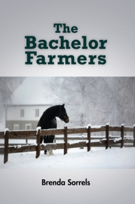 Back Cover text: The Bachelor Farmers takes us into a world where true meaning and healing are found in the complexity of human relationshps and in the choices that are made in th face of adversity