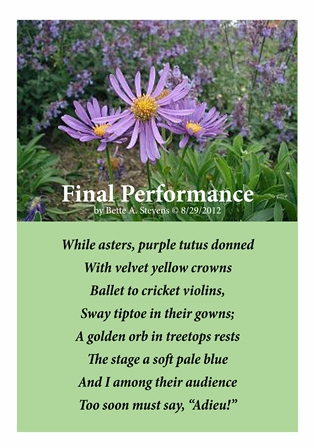 Final Performance SMALL