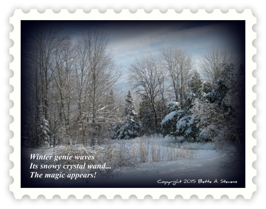 WINTER MAGIC Haiku bas 2015