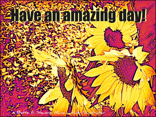 amazing-day-sunflower-art-bas-2016