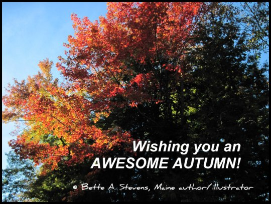 AWESOME AUTUMN bas