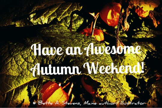 Awesome Autumn Weekend bas