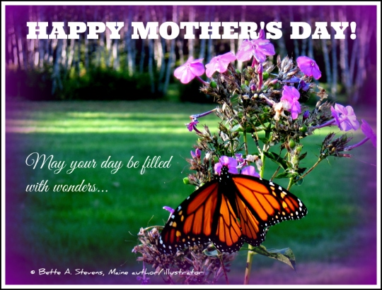 MOTHERS DAY 2016 Butterfly bas