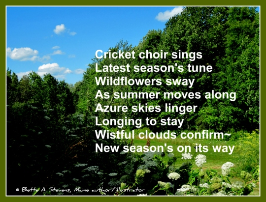 Wildflowers & cricket poem 4 blog BAS 2016