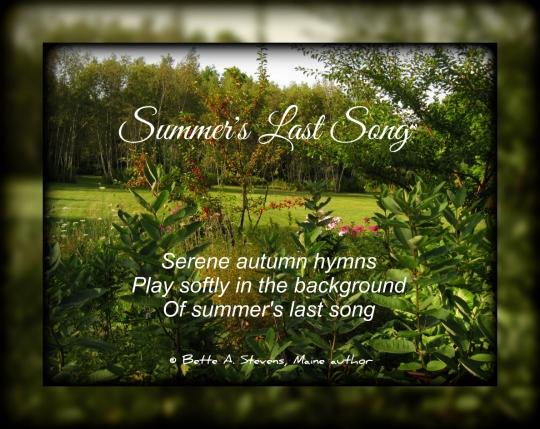 Summer's Last Song—Haiku by Bette A. Stevens
