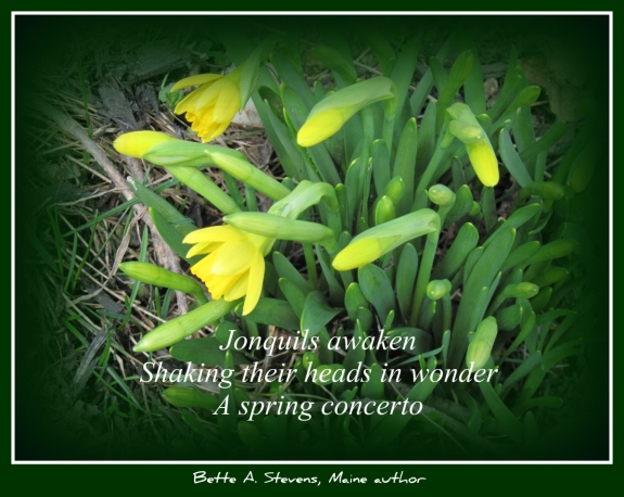 JONQUILS Awaken HAIKU 2017 bas