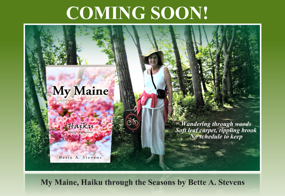 MY MAINE Wandering through woods 2 COMING SOON